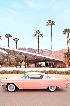 best honeymoon spots palm springs california stylish photo vintage car What are your dream top honeymoon destinations? Hawaii to Caribbean, romantic or adventurous. Check the post for the best honeymoon spots! Beach Aesthetic, Summer Aesthetic, Aesthetic Vintage, Aesthetic Photo, Pink Aesthetic, Aesthetic Pictures, Bedroom Wall Collage, Photo Wall Collage, Picture Wall