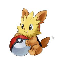 lillipup | pokemon | P...