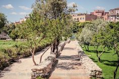 Alla scoperta dell'Orto dei Cappuccini e di Cagliari sotterranea, tra grotte chiuse e storie affascinanti.
