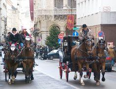 Merisi's Vienna for Beginners: Christmas in Vienna