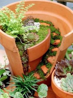 DIY Ideas  Little Garden