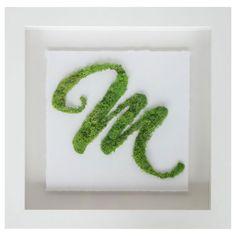 Brayden Studio Green Moss Script M Live Art Wall Décor Moss Wall Art, Moss Art, 3d Wall Art, Wall Art Decor, Wall Décor, Wall Art Designs, Wall Design, Succulent Wall Art, Succulents Art