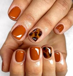 Staple autumn nails🧶 short torts🐢 using Fall, Glass Yellow, Chocolate + Jet Black. Prepped using Staple autumn nails🧶 short torts🐢 using Fall, Glass Yellow, Chocolate + Jet Black. Fancy Nails, Cute Nails, Pretty Nails, Cute Fall Nails, Diy Nails, Autumn Nails, Winter Nails, Fall Gel Nails, Fall Nail Polish