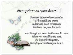 For my dear sweet fur babies ❤
