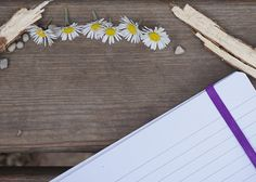 High resolution free Stock photo of Daisy, notebook, wooden sticks, stones. Free images for commercial projects. Free Stock Photos, Free Photos, My Photos, Project Yourself, Royalty Free Images, Daisy, Stone, Creative, Projects