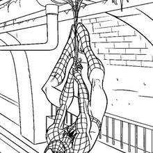 Spiderman coloring 63 bmp coloriage personnages superheros pinterest spiderman - Coloriage personnage spiderman ...