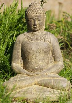 YOGA in mossy wood INSPIRATIONAL poster BUDDHA QUOTE strong pose 24X36 RARE