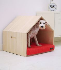 Dog house #doghouse #dogbed #dogshelter