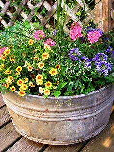 Check out these 10 favorite tips for annual flowers. Whether you are filling planters or flowers beds, these tips will help you maintain healthy annual flowers year round. Check out these 10 favorite t Full Sun Container Plants, Container Flowers, Container Gardening, Full Sun Plants, Succulent Containers, Full Sun Flowers, Meadow Flowers, Pot Jardin, Outdoor Flowers
