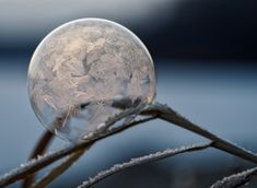 A macro frozen bubble with snowflake and crystal formations inside