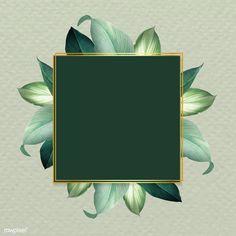 Square foliage frame on green background vector | premium image by rawpixel.com / Adj Black Background Wallpaper, Framed Wallpaper, Leaf Background, Flower Wallpaper, Vector Background, Background Patterns, Flower Backgrounds, Wallpaper Backgrounds, Flower Frame