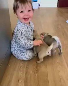 Cute Baby Videos, Cute Animal Videos, Funniest Animal Videos, Cute Little Animals, Cute Funny Animals, Funny Babies, Funny Dogs, Adorable Babies, Fun Funny