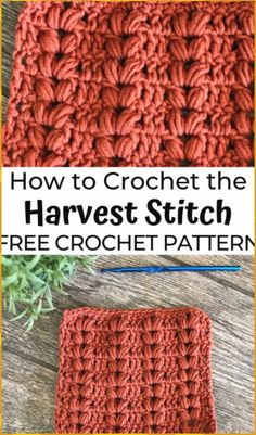 How to Crochet the Harvest Stitch - - All of the stitches this month feature the Puff Stitch. Today we're going to learn how to crochet the Harvest Stitch, an easy crochet puff stitch! Crochet Stitches Free, Crochet Basics, Puff Stitch Crochet, Different Crochet Stitches, Crochet Stitches For Blankets, Crocheted Blankets, Cross Stitches, Stitch Patterns, Knitting Patterns