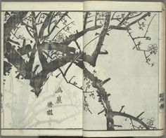 Okada, Baikan: woodcut, from Baika jô, The plum blossom album