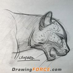 How to draw gestures and dynamic animals with Mike Mattesi