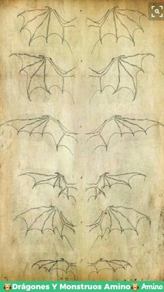 Dragon Drawing - 75 Picture Ideas - Drawing Ideas and Instructions .-Dragon Drawing – 75 Bildideen – Zeichenideen und Anleitungen, Dragon Drawing – 75 picture ideas – drawing ideas and instructions, ideas ideas Ch - Drawing Dragon, Dragon Sketch, Drawing Eyes, Dragon Art, Drawing Sketches, Pencil Drawings, Art Drawings, Dragon Drawings, Drawing Hands