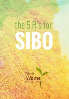 SIBO and the FODMAP Diet: Any time we talk about healing the gut, we always have to think back to the 5 R's. These are 5 essential steps t. 5 Rs, Natural Detox Drinks, Fat Burning Detox Drinks, Low Carbohydrate Diet, Candida Diet, Healthy Detox, Healthy Drinks, Diet Tips, Diet Hacks