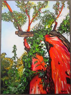 """Look Up"" 18 x 24 #morganmacaulay #art #artist #arbutus #tree #trees #oil #oilpainting #up #lookingup #fineart"