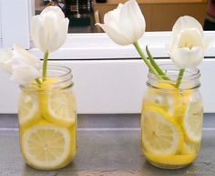 centerpiece idea w/oranges instead of lemons