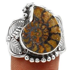 Fossil-Moroccan-Ammonite-925-Sterling-Silver-Ring-Jewelry-s-8-SR113240