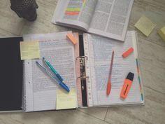 study lyf