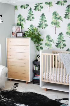 modern green, black and white boy's room with tree wallpaper and wood furniture