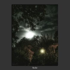 Meridiana claridad: Noche