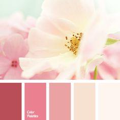 bright pink color, dark pink color, designer combination of colors, designers palette, light pink color, maroon-pink color, monochrome color, monochrome color palette