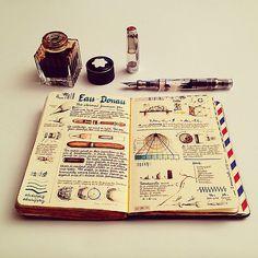 Naranja: The eternal fountain pen Sketch Journal, Pen Sketch, Journal Pages, Journals, Kunstjournal Inspiration, Bullet Journal Inspiration, Scrapbook Journal, Travel Scrapbook, Midori