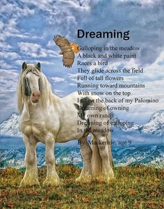 I have that dream every night and I hope it will happen one day