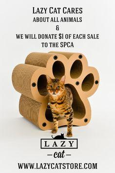 LAZY CAT CARES - COME VISIT US @ WWW.LAZYCATSTORE.COM
