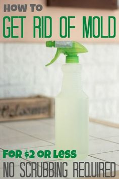 The easiest and least expensive way I've ever seen to get rid of mold.  Need to pin this one for future reference.