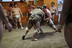 Glimpses of Ryogoku, Japan's sumo wrestling mecca | The Japan Times