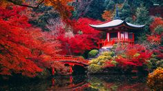 Kyoto, Japan | 10 Fantastic Places You Need to Visit In Asia (And Why)! (4)