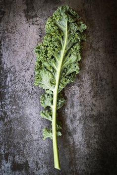 Kale ou pas kale?