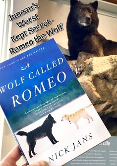 Nick Jans' book, A Wolf Called Romeo, is as much a memoir of the winter a black wolf appeared in town and became a Mendenhall Lake attraction, as it is a personal introspection.