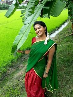 Beautiful Girl In India, Beautiful Indian Actress, Beautiful Dresses, Beautiful Women, Indian Girl Bikini, Indian Girls, Beauty Full Girl, Beauty Women, Tamil Girls