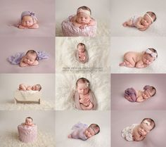 scottsdale arizona newborn photographer, phoenix newborn photographer, arizona…