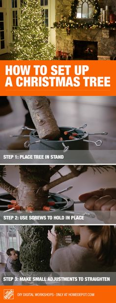 The right stand with the right supports can help you set up your Christmas tree straight as an arrow! Making Christmas tree setup easy just takes a little knowledge and some patience. While there are many types of Christmas trees, having a fresh cut on your trunk is key to keeping real Christmas trees alive. Once straight, live trees can be kept fresh all season with daily watering. Click to learn more about setting up a Christmas tree and keeping it alive with these watering tips.
