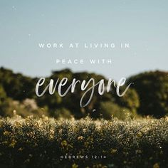 Yes my LORD, it shall be peace with everyone. I will strive the beat way that I know hoe to live in peace with everyone. In JESUS NAME, AMEN Book Of Hebrews, Hebrews 12, Lord King, Jesus Christ Superstar, New Living Translation, Bible Scriptures, Bible Quotes, Scripture Verses, Faith Quotes