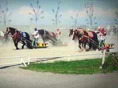 Banei Horse race  ばんえい競馬