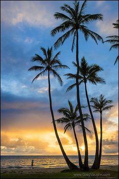 Coconut palm trees and man photographing sunrise at Punalu'u Beach Park, Windward Oahu, Hawaii. Beautiful Sunset, Beautiful Beaches, Beautiful Beach Pictures, Art Surf, Punaluu Beach, Image Deco, Sunrise Pictures, Hawaii Pictures, Nature Landscape