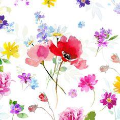 Harrison Ripley - Red Poppy Mixed Flora 2 Final