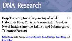 Publication form NIPGR - Genotypic's NGS services acknowledged DNA Research, 2013  Deep Transcriptome Sequencing of Wild Halophyte Rice, Porteresia coarctata, Provides Novel Insights into the Salinity and Submergence Tolerance Factors. R Garg, M Verma, S Agrawal, R Shankar, M Majee, Mukesh Jain http://dnaresearch.oxfordjournals.org/content/early/2013/10/08/dnares.dst042.full