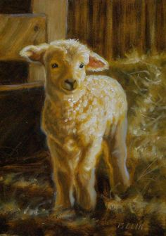 Mary Iselin Fine Art - More Speep and Lamb Paintings Lion And Lamb, Sheep And Lamb, Sheep Paintings, Animal Paintings, Black Sheep Tattoo, Duck Art, Sheep Art, Barnyard Animals, Cow Painting