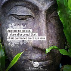 Accepte ce qui est, laisse aller ce qui était et aie confiance ... #citation #citationdujour #quote #quoteoftheday
