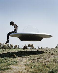 E um dia os homens descobrirão que esses discos voadores estavam apenas estudando a vidas dos insetos.