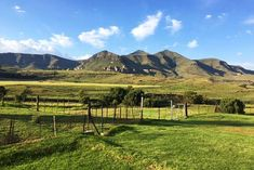 De Molen - Clarens Accommodation. Picnic Spot, Picnic Area, White River Rafting, Fishermans Cottage, Cosy Lounge, Abseiling, Free State, Open Fireplace, Thatched Roof