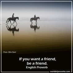 English Proverb ~ If you want a friend, be a friend.