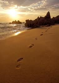 Quante volte non sappiamo che direzione prendere nella nostra vita, eppure, a volte, sono i nostri sentimenti che, ci sollevano il mento, ci prendono per mano e danno forza ai nostri passi.